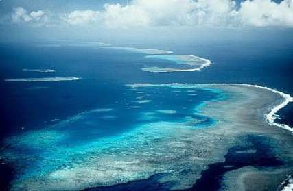 Credit: ARC Centre for Excellence for Coral Reef Research