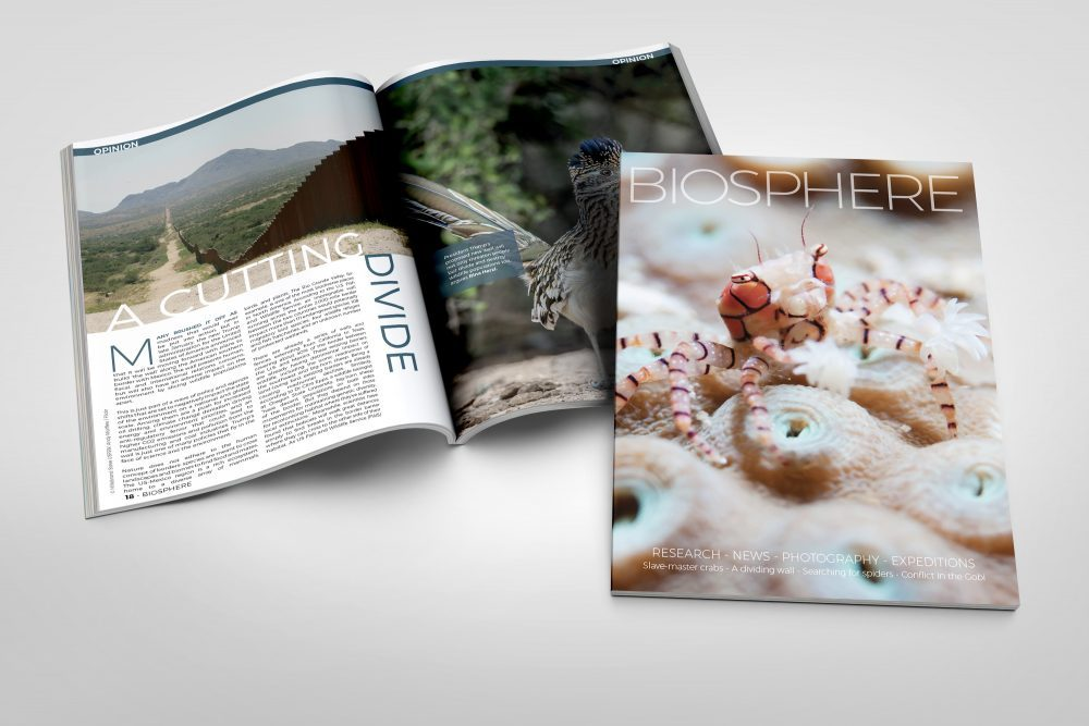 Biosphere Issue 24