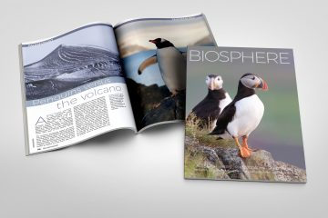 Biosphere Issue 25